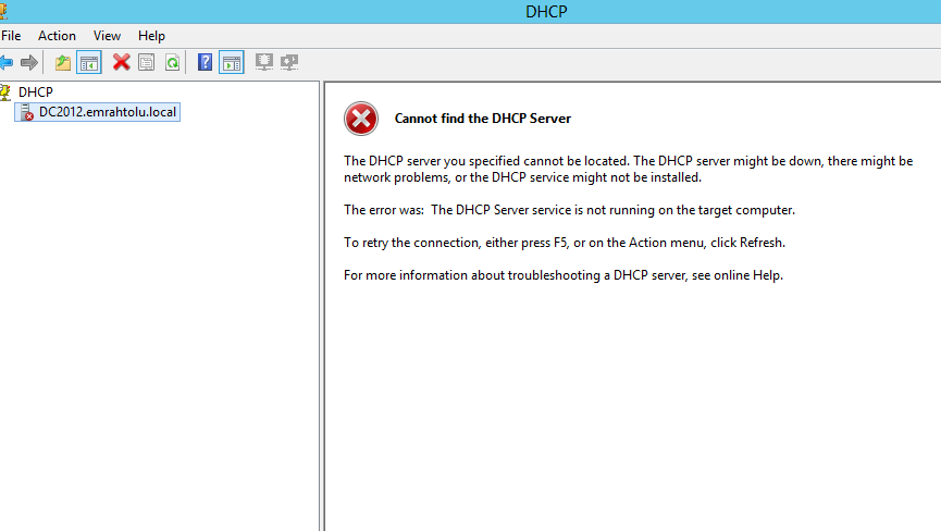 DHCP41